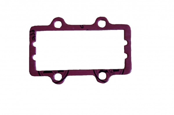 IAME X30 Reed Block Gasket Outer