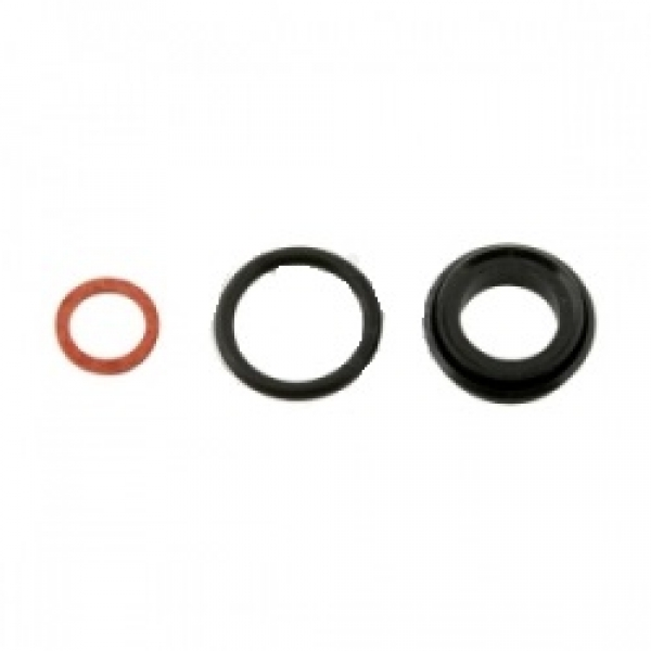 Righetti Ridolfi Master Cylinder Seal Kit