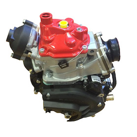 Rotax Max Senior Short Engine