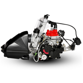 Rotax Max Evo Senior Engine